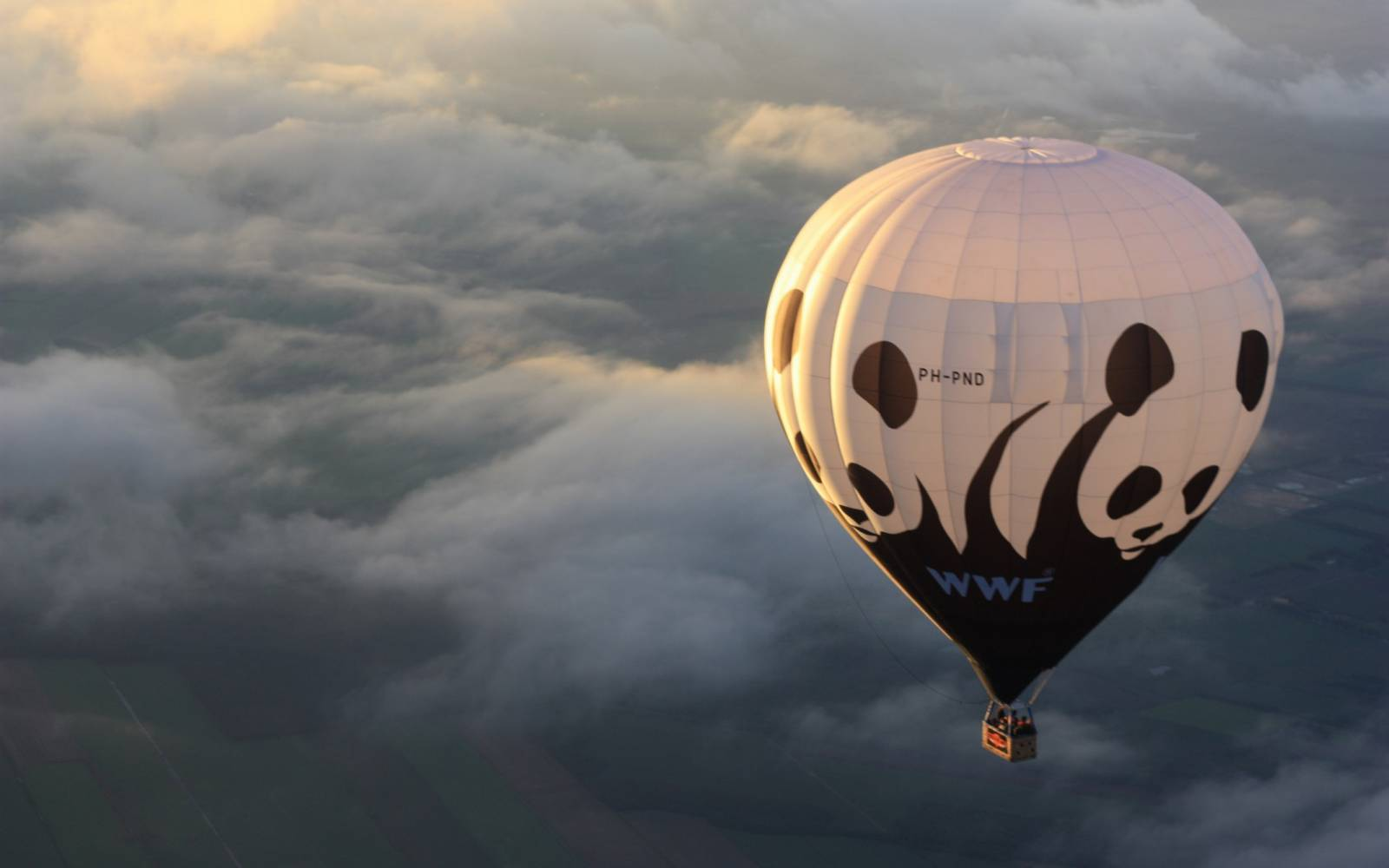 WWF Ballon in der Luft
