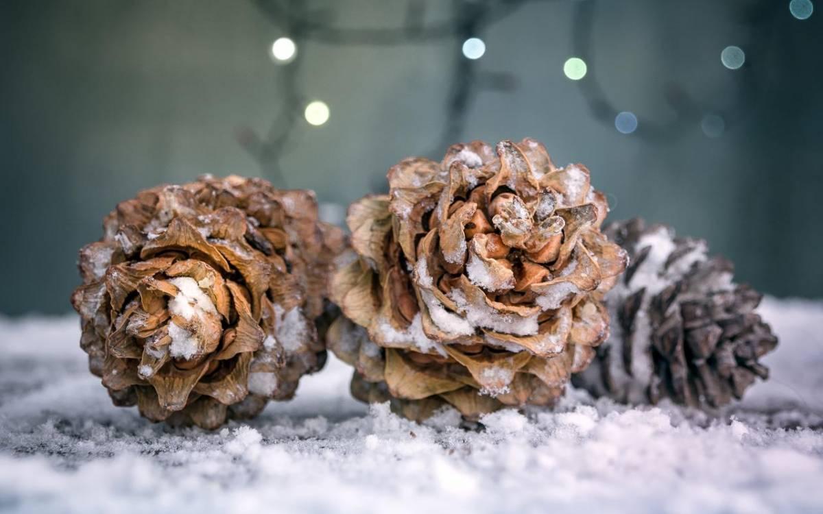 Decorazioni di Natale Tannzapfen
