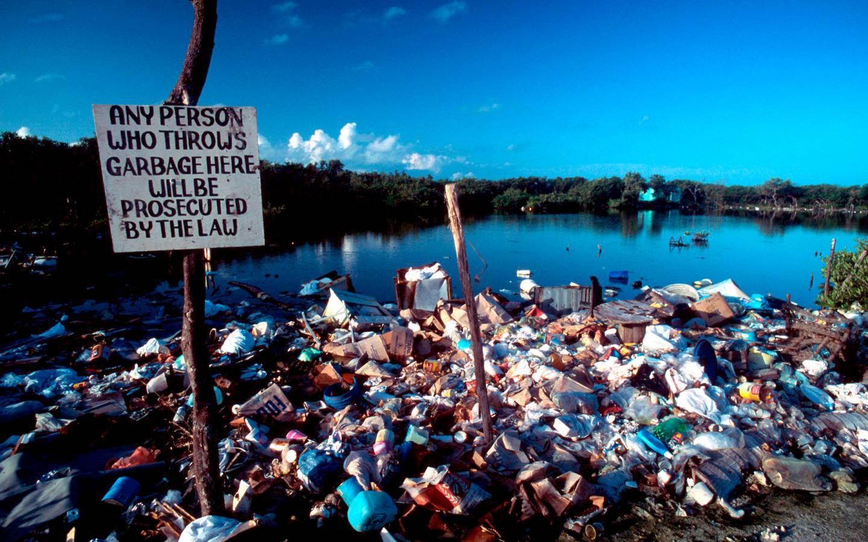 Plastiverschmutzung eines Küstenabschnitts in Belize