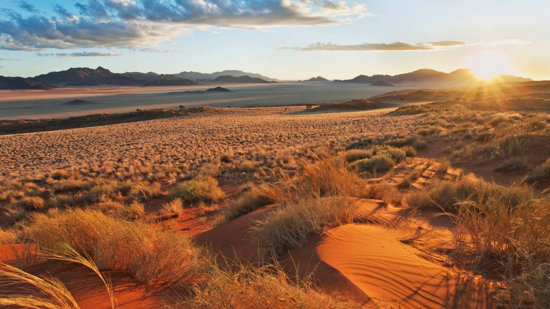namibia 44 prozent stehen unter naturschutz wwf schweiz. Black Bedroom Furniture Sets. Home Design Ideas