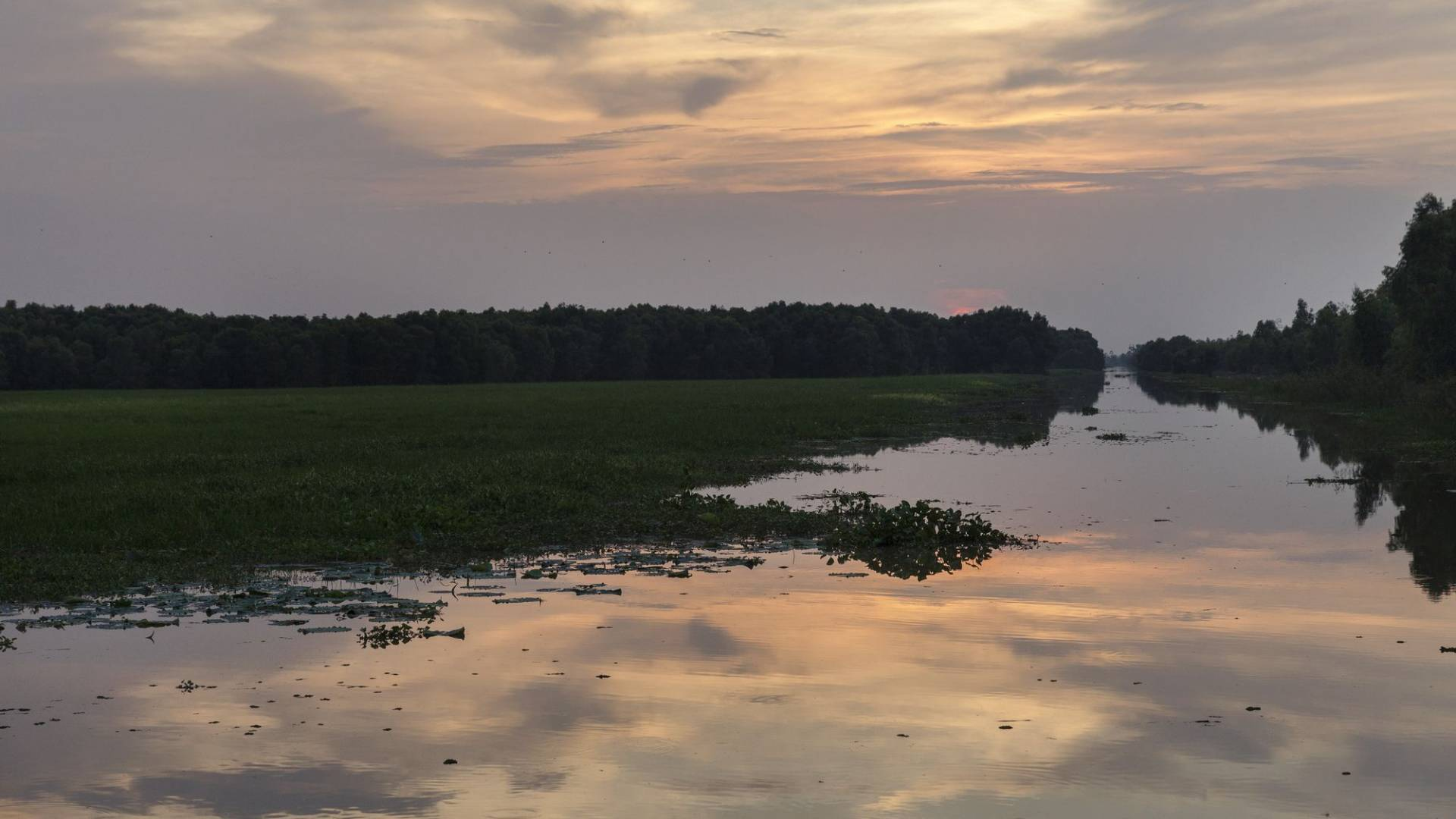 Tramonto sul fiume Mekong in Tram Chim National Park, il Vietnam